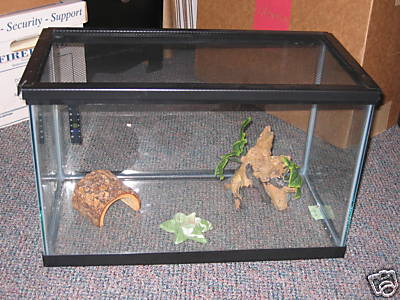20 gallon fish reptile lizard tank cage w lid extras for 20 gallon fish tank lid