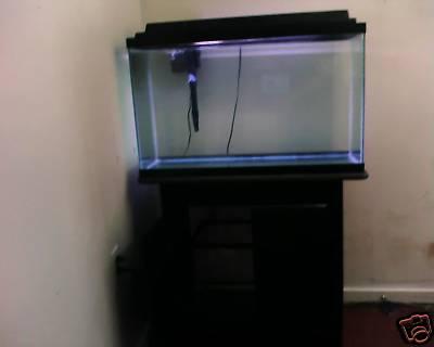 Aquarium For Sale Ebay 1000x1000 2017 Fish Tank