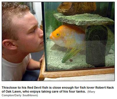 fishlooking.jpg