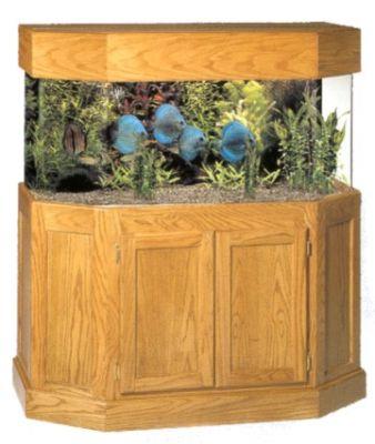 60 Gallon Flatback Hexagon Acrylic Aquarium